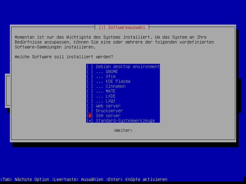 """Debian Softwareauswahl mit ausgewähltem """"SSH Server"""" und """"Standard-Systemwerkzeuge"""""""