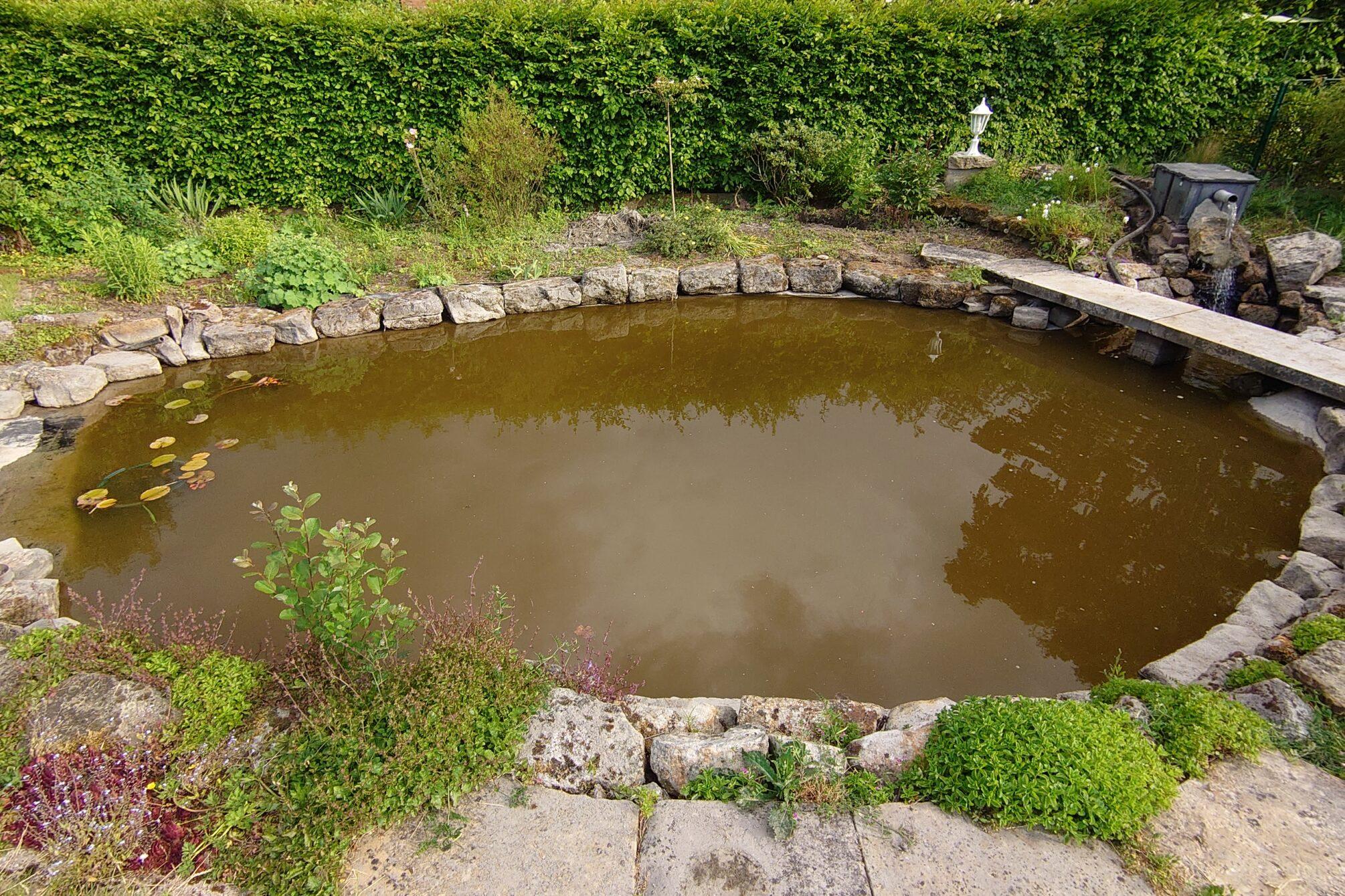 Weitwinkelaufnahmen des Teichs
